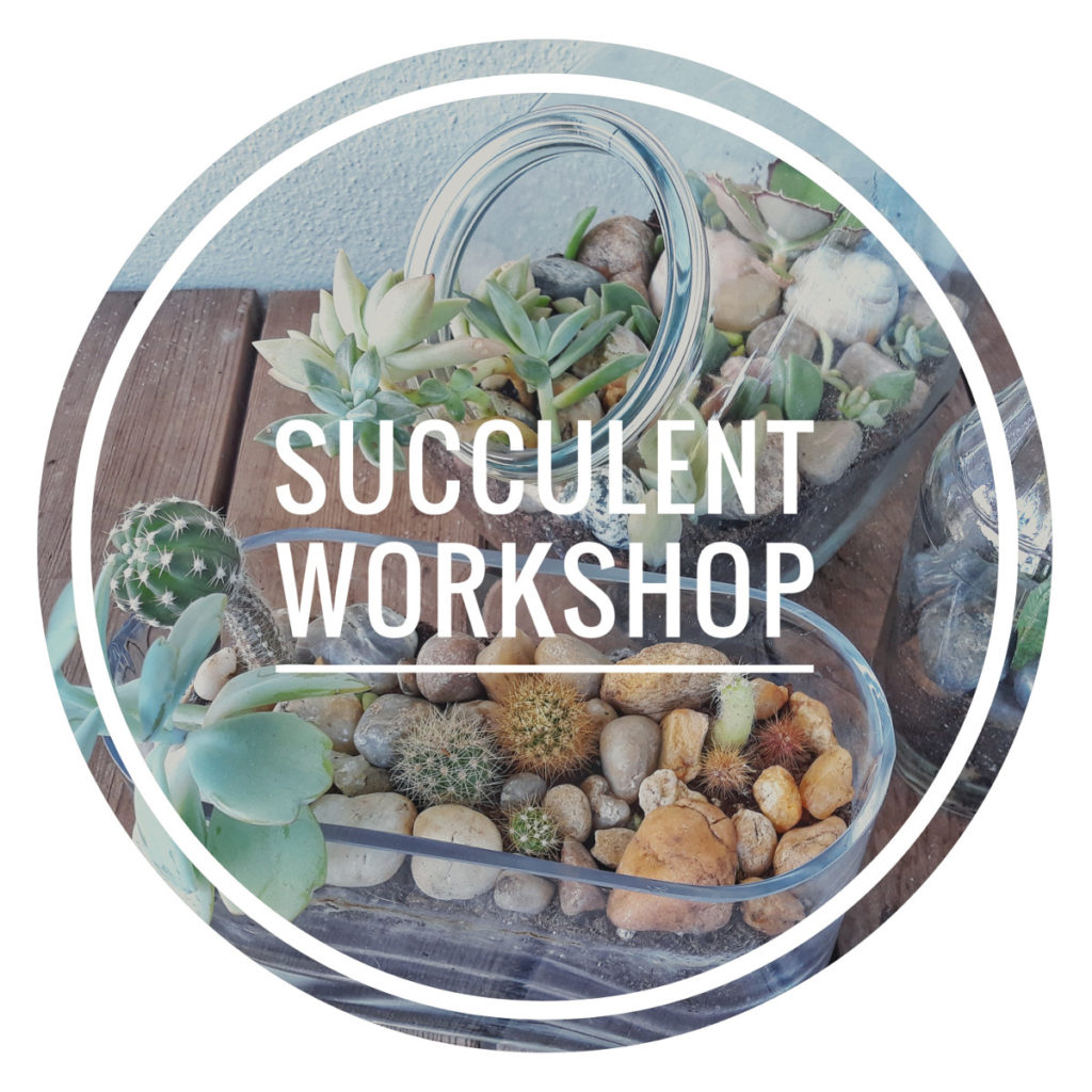 succulentworkshop